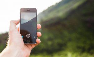 החזרה הדיגיטלית לגן עדן